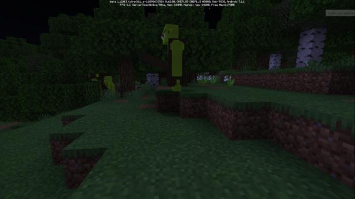 Gameplay Minecraft